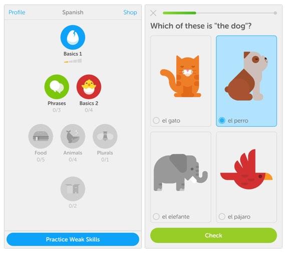 אפליקצייה ללימוד שפות